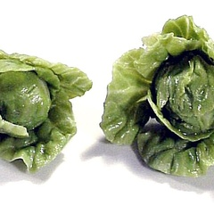 Image of Lettuce, Crinkly, Single