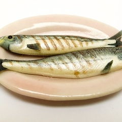 mackerel_grilled_pink_plate_2 (11868_21)