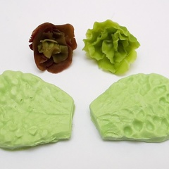 Image of Crinkly Lettuce Veiners #4