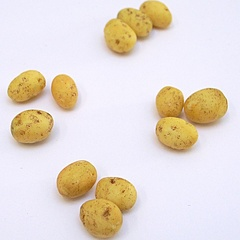 Image of Potatoes, Clean pk3