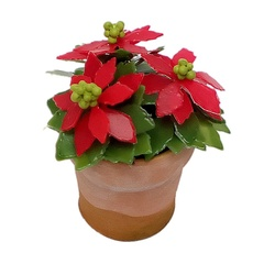 Poinsettia group of 3 in pot