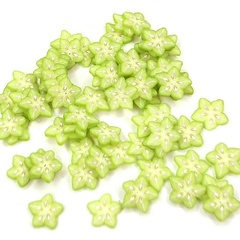 Image of Star Fruit Slices Pack