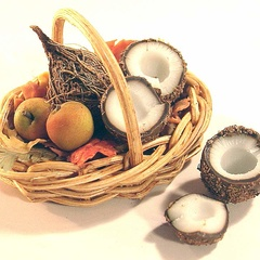 coconut-basket_999_41